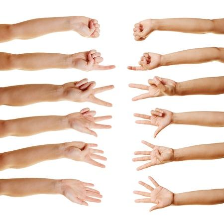 dedo me�ique: Muchas manos contando con los dedos de cero a cinco Foto de archivo