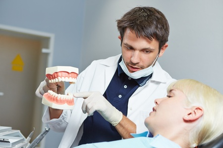 Dentist explaining dental treatment to patient with fake denture photo