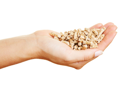wood pellets: Female hands with many wood pellets with fuel value Stock Photo