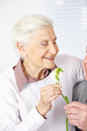 eldercare: Old man offering smiling senior woman Freesia flowers Stock Photo