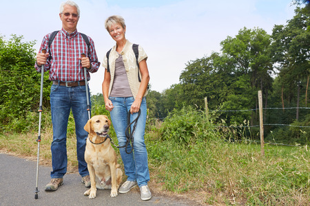 active: Two senior people walking with a labrador retriever dog in the summer