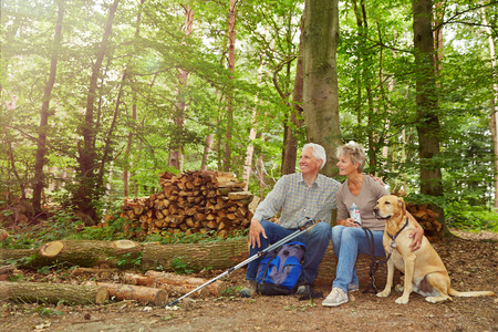 Happy senior couple sitting in forest with dog in summer photo