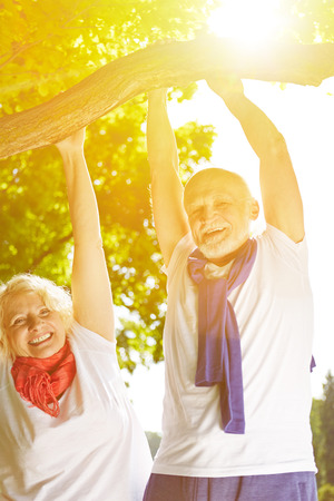 vital: Two happy senior people doing pull-ups on a tree in summer Stock Photo