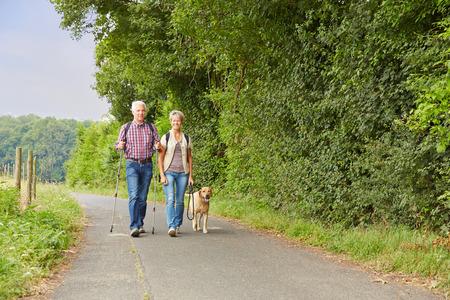 Ltere Paare Spaziergang mit dem Hund in der Natur im Sommer Standard-Bild - 35970307