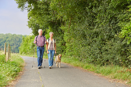 Pares mayores que recorren el perro en la naturaleza en el verano