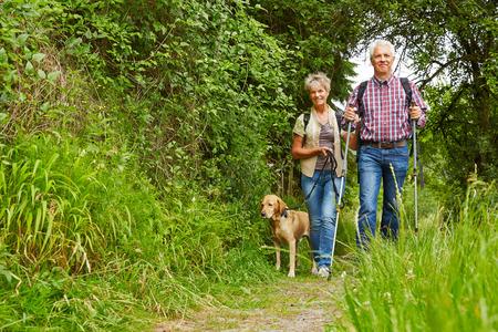 Glückliche ältere Paare, die mit Hund auf einem Wanderweg
