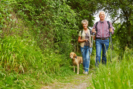 Happy senior paar wandelen met de hond op een wandelpad Stockfoto