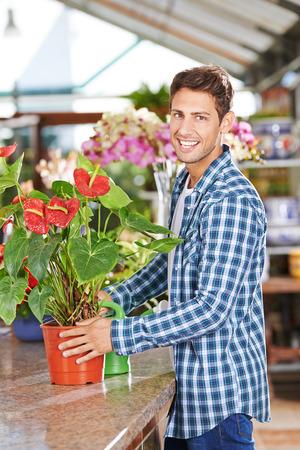 anthurium: Happy gardener with a flamingo flower (anthurium) in a nursery shop