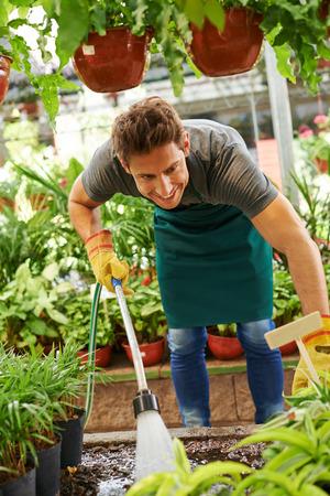 water hose: Gardener watering plants with water hose in a nursery shop