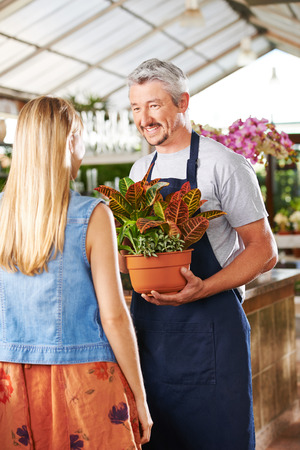 garden staff: Florist with croton plant and woman in a nursery talking to each other Stock Photo