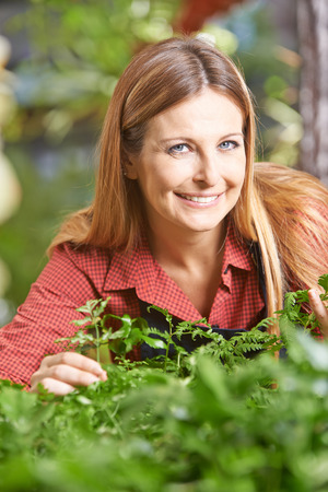 garden staff: Smiling female gardener controlling growth of plants