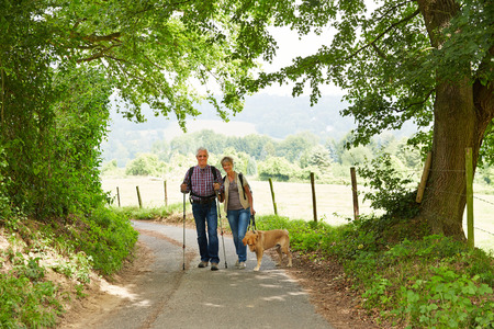 old couple walking: Happy senior couple with dog walking on hiking trail in summer