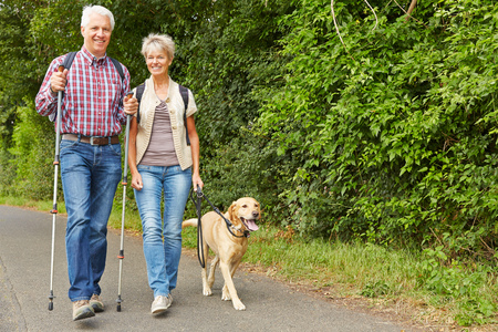 senior citizens: Happy senior couple hiking with labrador retriever dog in summer Stock Photo