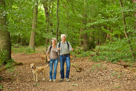 Happy senior couple waking the dog in a forest in summer