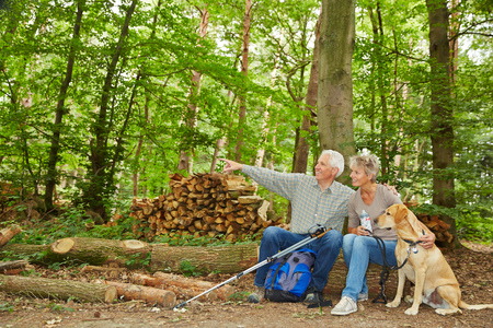 Man showing woman their destination of a hiking trip in forest photo
