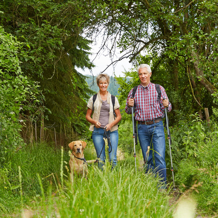 seniors laughing: Happy senior couple with dog on a hike in summer in the nature Stock Photo