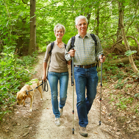 Two smiling seniors walking with their dog in a forest in summer
