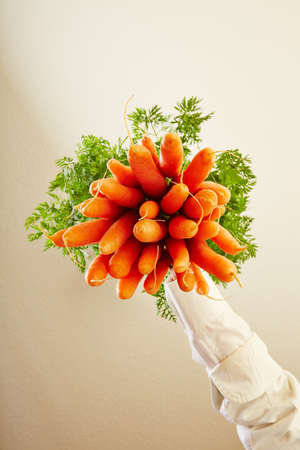 veganism: Bunch of fresh carrots from below as symbol for veganism Stock Photo