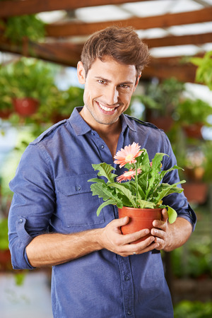 garden staff: Smiling man holding pot with gerbera flower in a garden center