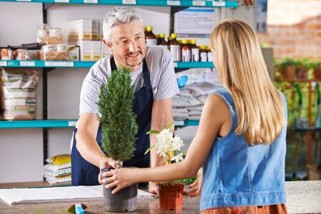 tree service business: Woman buying plants in nursery and talking with salesman