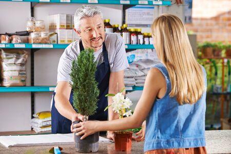 flower nursery: Woman buying plants in nursery and talking with salesman