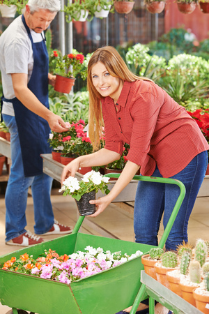 woman shopping cart: Smiling woman buying many flowers with shopping cart in a garden center
