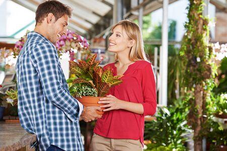 garden center: Happy couple buying a plant (codiaeum variegatum) in a garden center