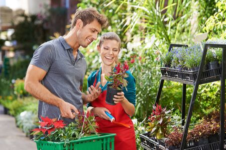 garden staff: Man as customer in garden center talking with gardener