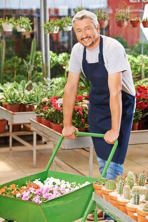 garden center: Smiling elderly man working in a garden center