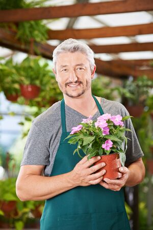 impatiens: Smiling gardener with impatiens flower in a nursery shop Stock Photo
