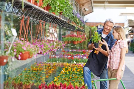 garden staff: Smiling woman buying yellow woolflower in a nursery shop from a gardener