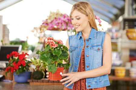 garden staff: Woman buying pot with begonia in nursery of a garden center