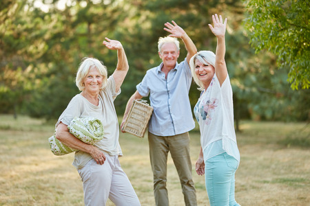 Happy group of seniors make a picnnic and wave in summer in the park