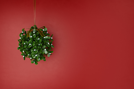 Mistletoe wreath hanging for christmas in front of a red wall (3D Rendering)