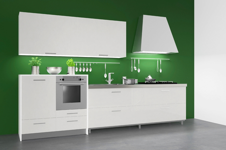 fitted: Modern fitted kitchenette in kitchen on a green wall (3D Rendering)