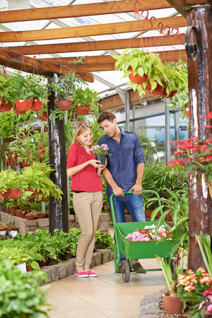 garden center: Man and woman shopping together for flowers in a garden center