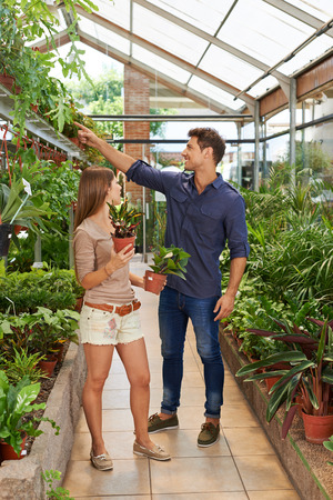 Man and woman buying green plants together in a nursery shop photo