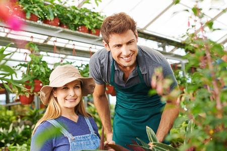 Two gardeners working in a greenhouse in green plants photo