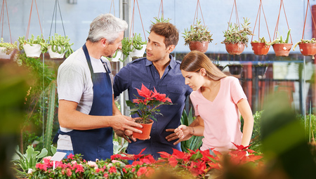 Couple buying poinsettia plant in nursery shop and talking to gardener photo