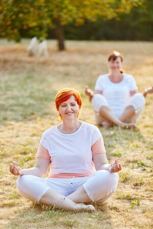 tailor seat: Two senior women making yoga in the park in summer