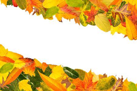 Fein Bilder Von Herbstblättern Zu Färben Zeitgenössisch ...