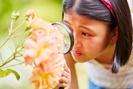 Girl with magnifying glass explores nature as reseracher Stock Photo