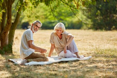 play the old park: Happy senior couple in a picnic in the garden in summer  Stock Photo