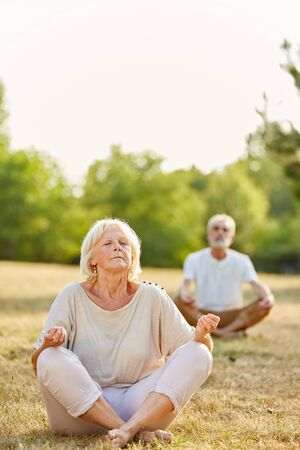 tailor seat: Senior couple making a yoga exercise in the park in summer