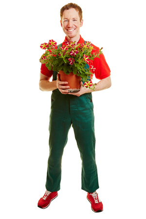Florist with a green overall holding a flower pot on his hands
