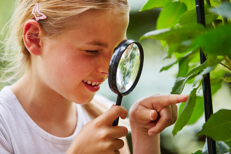 explores: Curious child explores nature and looks at leaf with loupe