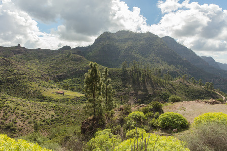 Idyll nature with mountain landscape in Gran Canaria