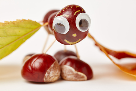 Cute chestnut animal made from chestnuts in autumn