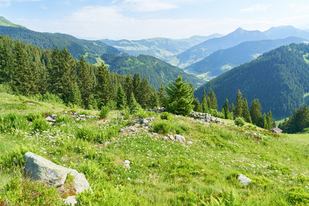Idyllic landscape in summer in the French Alps 写真素材