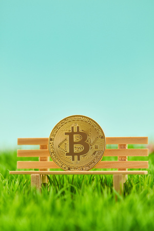 Bitcoin coin on bank as investment concept in nature Imagens